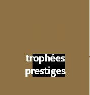19 trophées prestiges - Royal Pyrotechnie