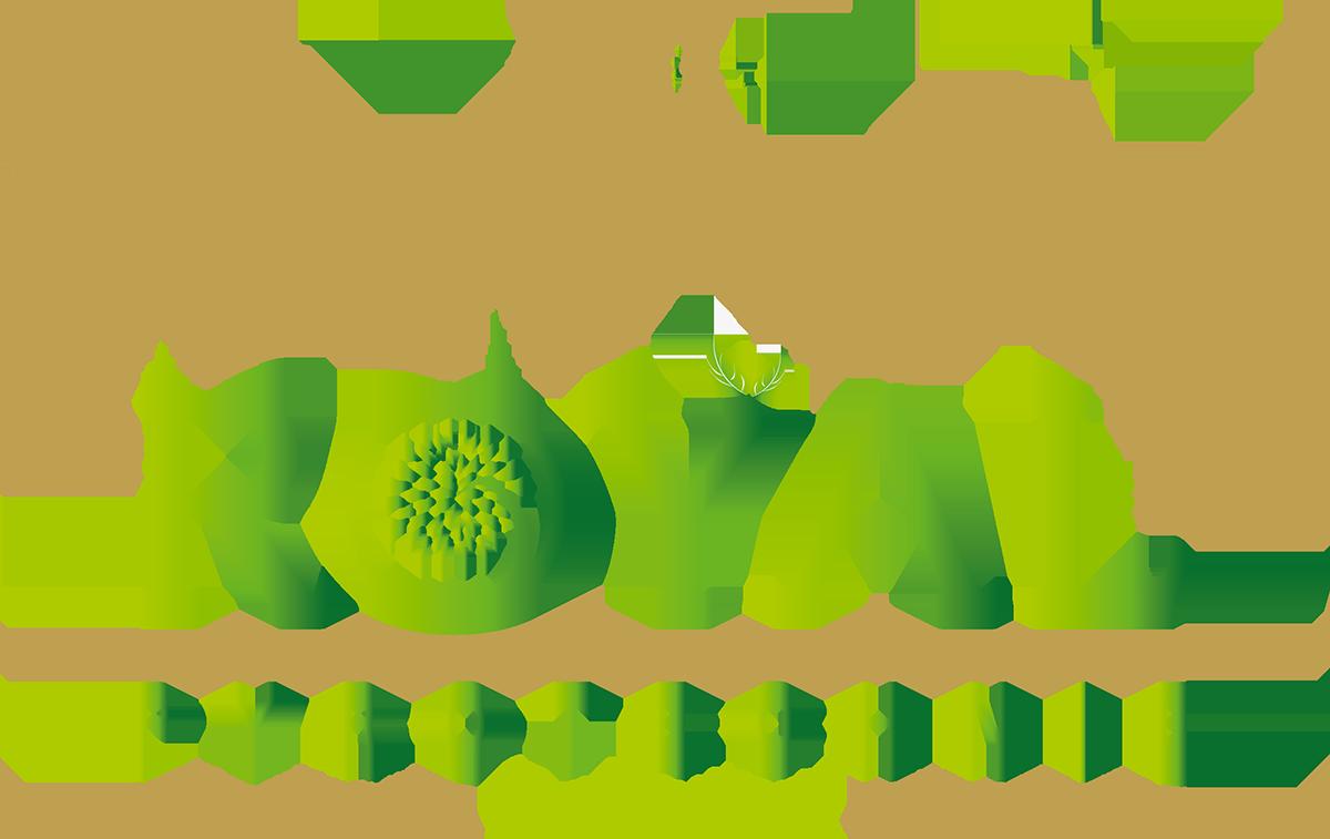 Royal Pyrotechnie Concepteurs et distributeurs de feux d'artifices